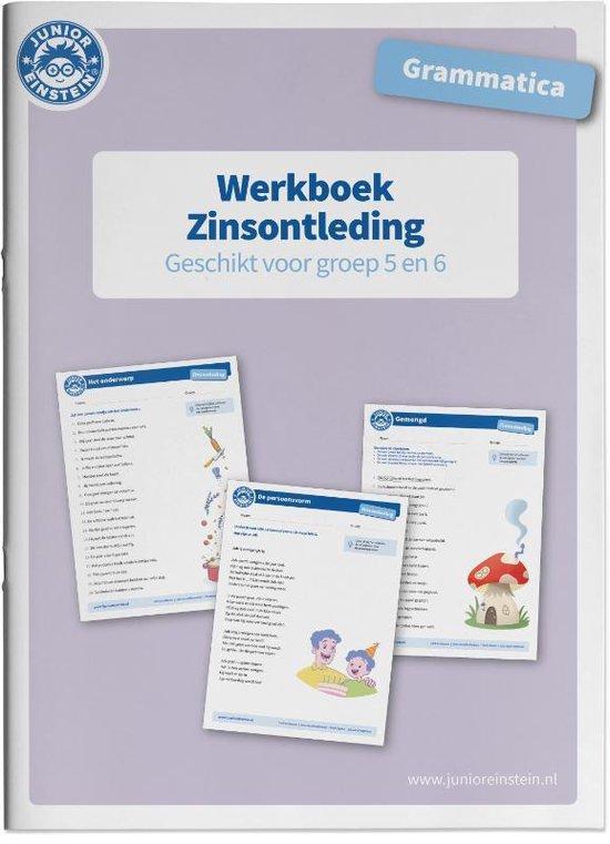 Zinsontleding Werkboek Grammatica voor groep 5 en 6 - none | Fthsonline.com