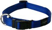 Rogz For Dogs Fanbelt Halsband - Blauw - 20mm x 34-56cm