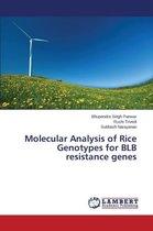 Molecular Analysis of Rice Genotypes for Blb Resistance Genes