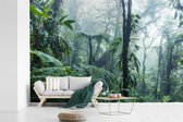 Een mistig regenwoud in Costa Rica fotobehang vinyl breedte 330 cm x hoogte 220 cm - Foto print op behang (in 7 formaten beschikbaar)