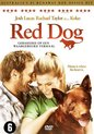 Red Dog (Dvd)