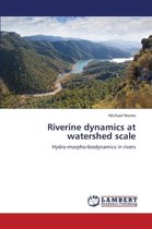 Riverine Dynamics at Watershed Scale