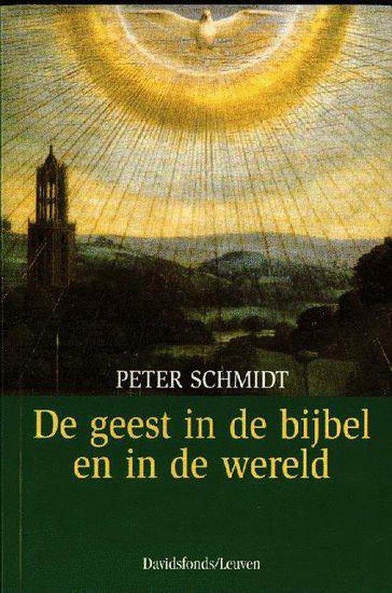 De geest in de bijbel en in de wereld - Peter Schmidt pdf epub