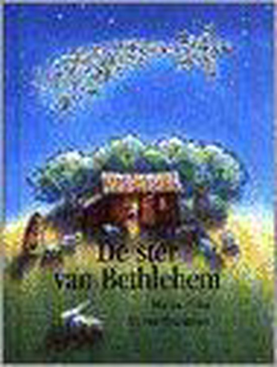 Boek cover De Ster Van Bethlehem van Marcus Pfister (Hardcover)