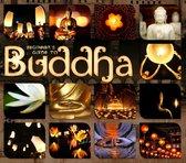 Beginner'S Guide To Buddha