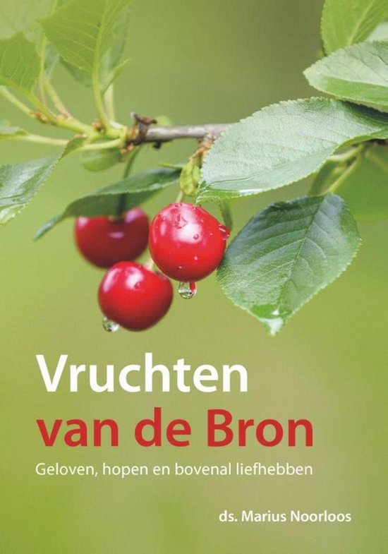 Vruchten van de Bron - Marius Noorloos |
