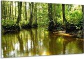 Canvas schilderij Natuur   Groen, Bruin   120x70cm 1Luik