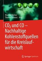 Boek cover CO2 und CO – Nachhaltige Kohlenstoffquellen für die Kreislaufwirtschaft van