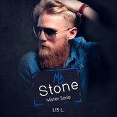 Mister serie 1 - Mr. Stone