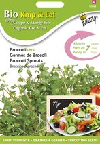 Buzzy® Organic Sprouting Broccolikers (BIO)