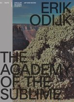 Erik Odijk - The Academy Of The Sublime