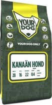 Yourdog kanaän hond pup - 3 kg - 1 stuks