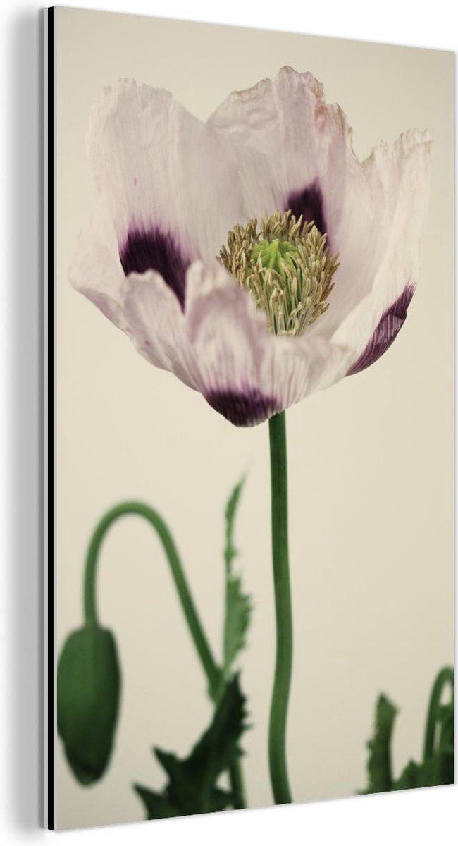 Bloeiende slaapbol met de witte en paarse bladeren Aluminium 60x90 cm - Foto print op Aluminium (metaal wanddecoratie)