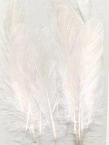 Witte veren -  12,5-17,5 cm hoog - 15 Stuks