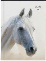 My favourite friends paarden agenda 2021 - 15.8 x 12 cm - lannoo -1 paard