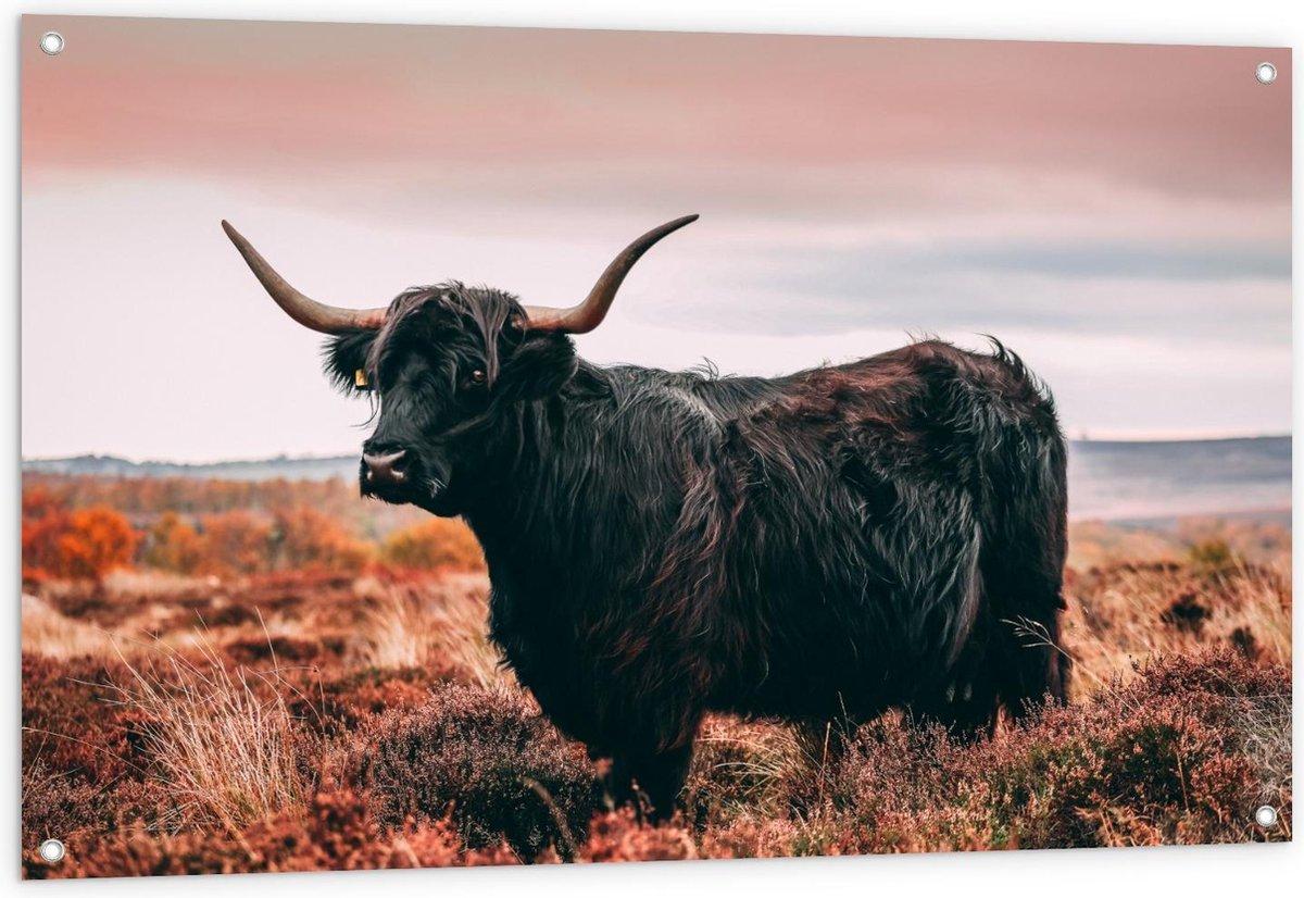 Tuinposter   Zwarte Schotse Hooglander - 120x80cm Foto op Tuinposter  (wanddecoratie voor buiten en binnen)