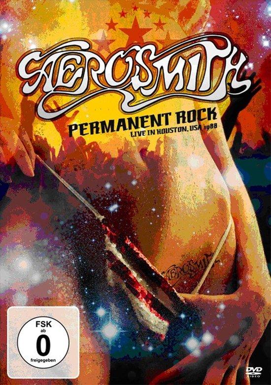 Cover van de film 'Aerosmith - Permanent Rock Live Houston 1988'
