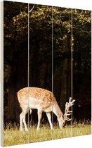 Grazend hert Hout 20x30 cm - klein - Foto print op Hout (Wanddecoratie)