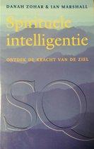Spirituele intelligentie - Ontdek de kracht van de ziel