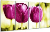 Glasschilderij Tulp | Roze, Groen, Wit | 160x80cm 4Luik | Foto print op Glas |  F003725