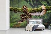 Behang - Fotobehang - Bruin met zwart gekleurde slang - Breedte 390 cm x hoogte 260 cm