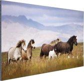 Paarden in de bergen Aluminium 90x60 cm - Foto print op Aluminium (metaal wanddecoratie)