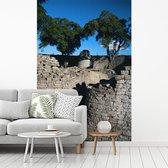 Fotobehang vinyl - Bomen en helder blauwe lucht bij de ruïnes van Groot-Zimbabwe breedte 175 cm x hoogte 270 cm - Foto print op behang (in 7 formaten beschikbaar)