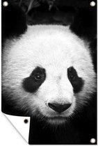 Tuindecoratie Close-up van een panda - zwart wit - 40x60 cm - Tuinposter