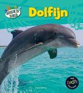 Dieren in beeld  -   Dolfijn
