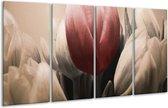 Glasschilderij Tulp   Rood, Grijs, Zwart   160x80cm 4Luik   Foto print op Glas    F002539