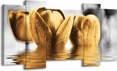 Canvas schilderij Tulpen | Zwart, Goud, Grijs | 120x65 5Luik