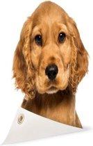 Close-up van een puppy Tuinposter 200x100 cm - Tuindoek / Buitencanvas / Schilderijen voor buiten (tuin decoratie) XXL / Groot formaat!