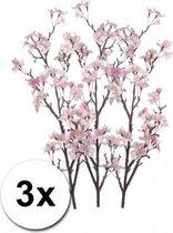 3x Appelbloesem tak roze 104 cm