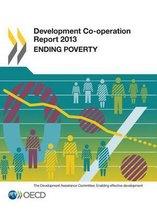 Development co-operation report 2013