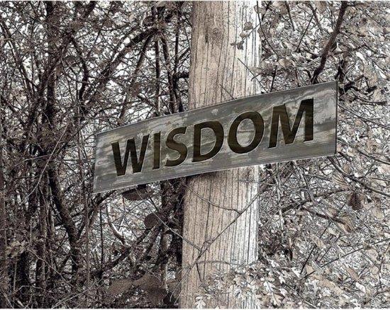 Wisdom - Naomi Albrechts   Fthsonline.com