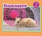 Vertel Maar  -   Hamsters