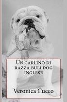 Un Carlino Di Razza Bulldog Inglese
