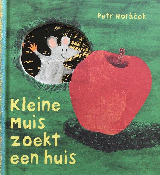 Kleine muis zoekt een huis - Petr Horacek |