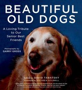 Beautiful Old Dogs