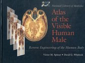 National Library Of Medicine Atlas Of The Visible Human Male