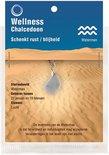 Edelsteen Hanger Sterrenbeeld Waterman - Chalcedoon
