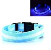 LED Halsband BLAUW Oplaadbaar- XL