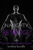 Naughty Revenge: Erotica Bundle