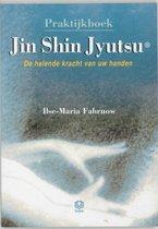 Praktijkboek Jin Shin Jyutsu
