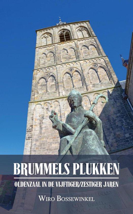 BRUMMELS PLUKKEN - Oldenzaal in de vijftiger/zestiger jaren - Wiro Bossewinkel |