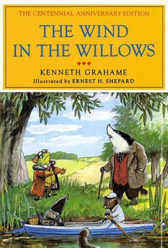 Boek cover The Wind in the Willows van Michael Plessix (Hardcover)