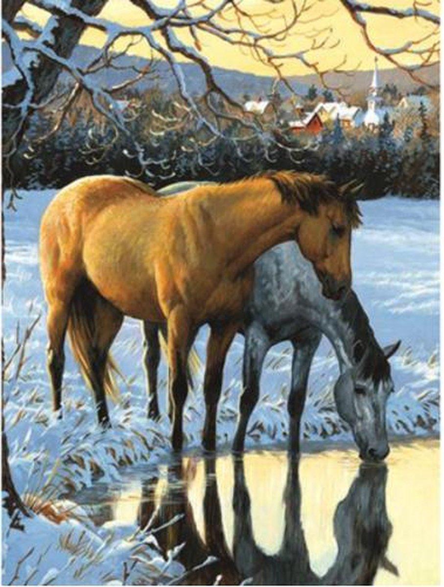 SEOS Shop ® Diamond Painting Pakket Paarden drinken water - Volwassenen - 25x30 cm