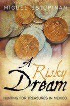 A Risky Dream