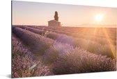 Zonsopkomst boven een lavendelveld Aluminium 180x120 cm - Foto print op Aluminium (metaal wanddecoratie) XXL / Groot formaat!