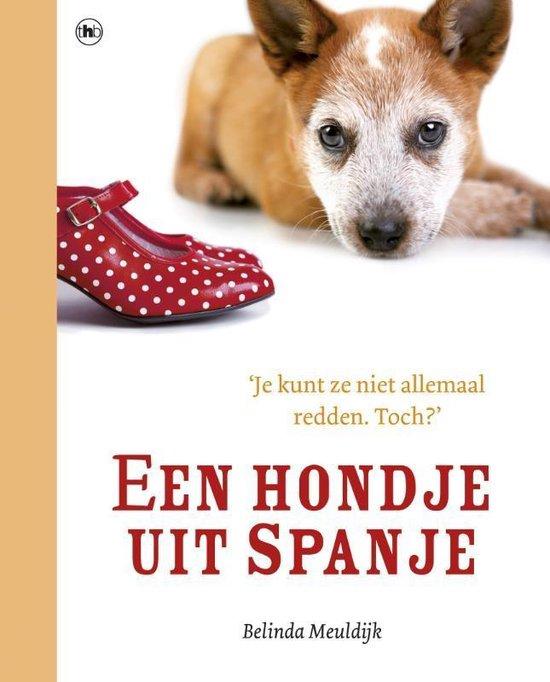 Een hondje uit Spanje